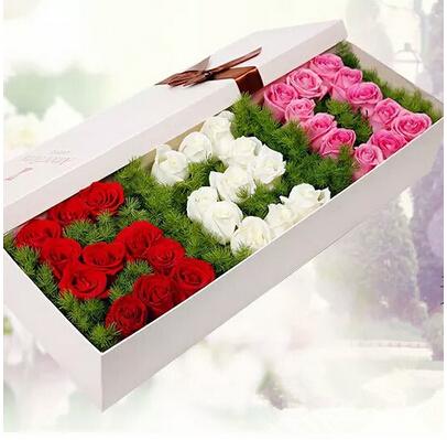 红色 白色 紫色玫瑰共33朵/恋 你