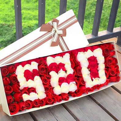 66朵红玫瑰/520