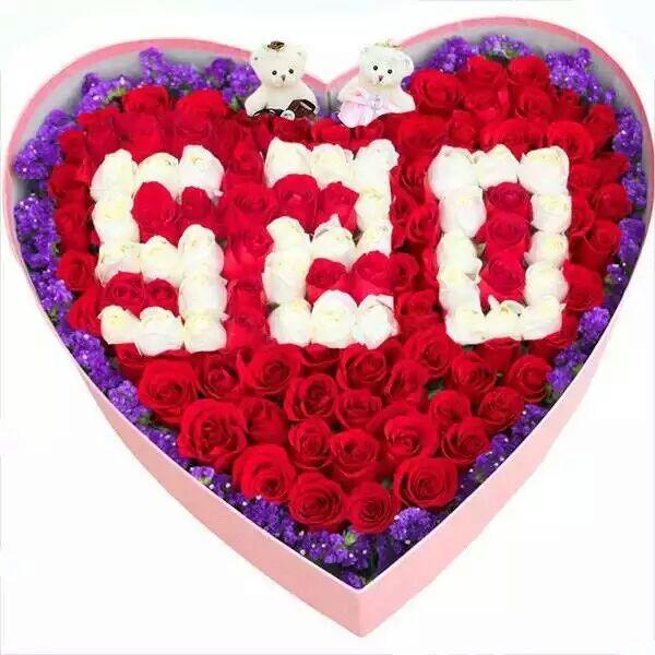 66朵红玫瑰/只想爱你
