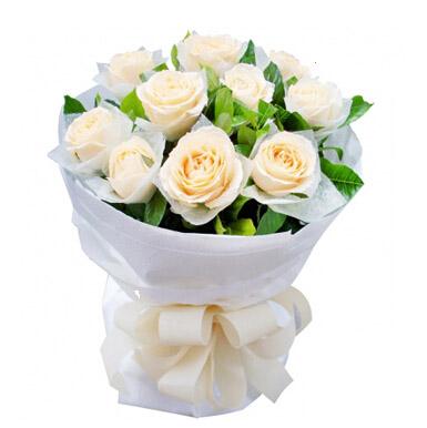 香槟玫瑰11枝/温柔目光