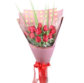 红玫瑰11朵/快乐心情