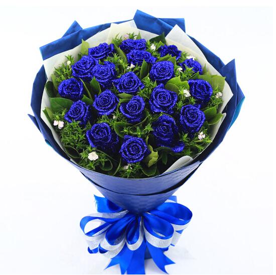 19朵蓝玫瑰/长情