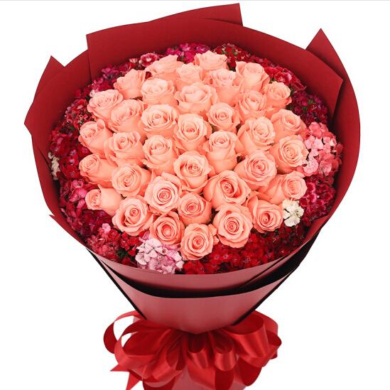 33朵粉玫瑰/遇见一个人
