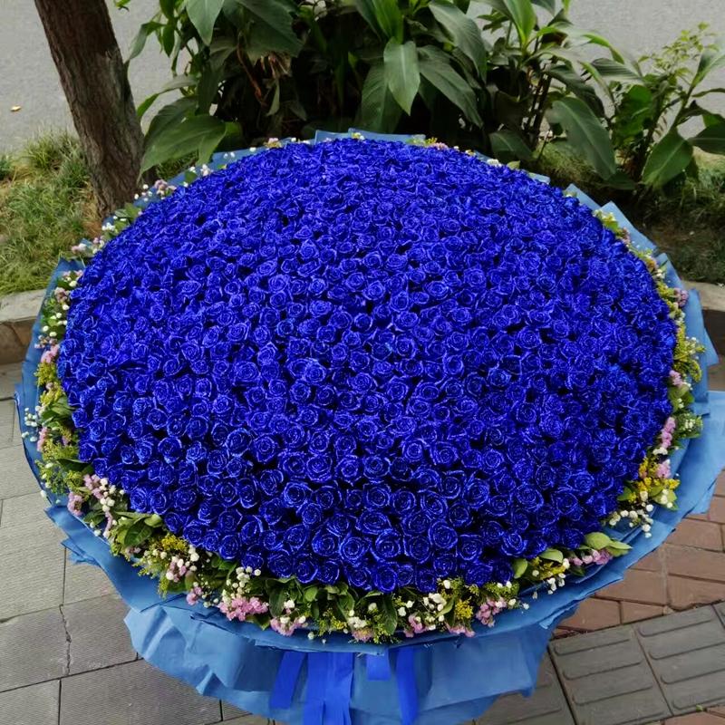 999朵蓝玫瑰/满满爱