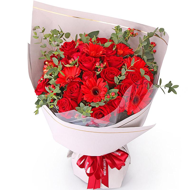 33朵红玫瑰/暖暖情谊