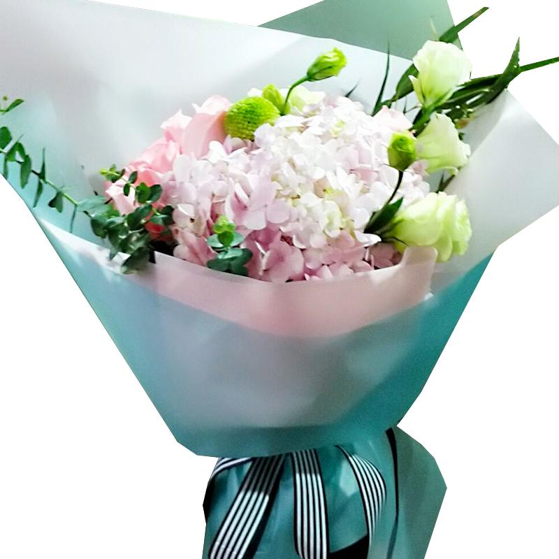 19朵戴安娜粉玫瑰/温柔时光